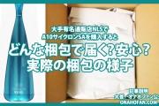 通販店NLSでA10サイクロンSAを購入するとどんな梱包で届く?実証